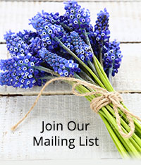 Flowers Mailing List